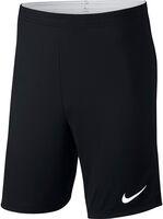 Dry Academy 18 Shorts