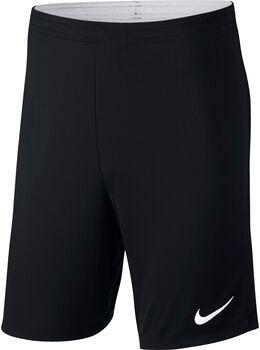 Nike Dry Academy 18 Shorts