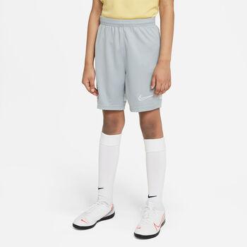 Nike Dri-FIT Academy træningsshorts
