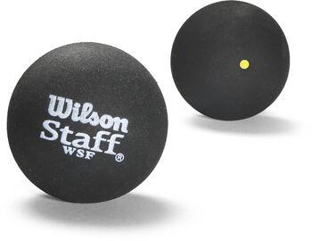 Wilson Squashbold, Gul