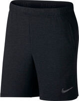 Nike Light Dry Shorts