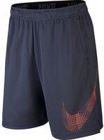 Nike Dry Shorts GFX 1 - Mænd