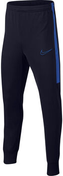 Nike Dry Academy Track Pant