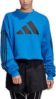 Adjustable 3-Stripes Sweatshirt