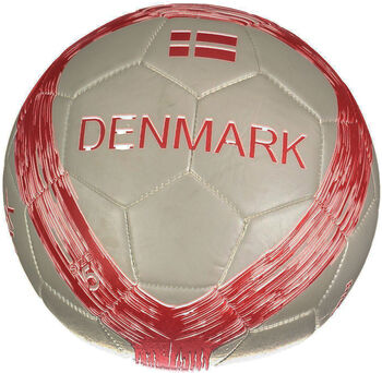 PRO TOUCH Danmark fodbold
