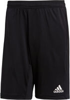 adidas Condivo 18 Training Shorts - Unisex