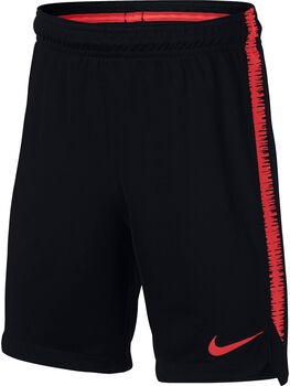 Nike Dry Squad Short