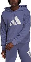 Sportswear Future Icons hættetrøje