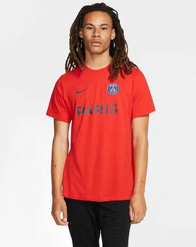 Nike Paris Saint-Germain Core Match Tee Herrer