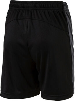 Puma Evo TRG Shorts Sort