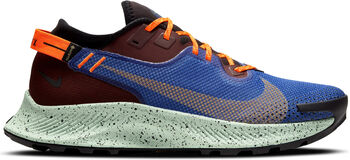 Nike Pegasus Trail 2 GORE-TEX Herrer Multifarvet