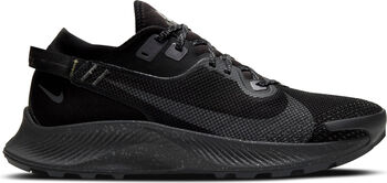 Nike Pegasus trail 2 GORE-TEX Herrer