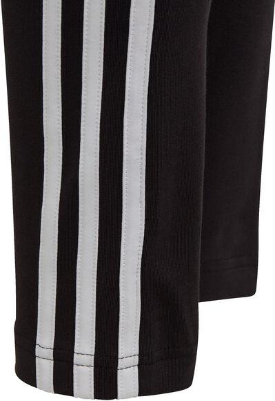 3-Stripes Cotton Tights Junior