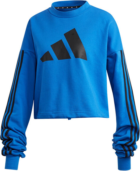 Adjustable 3-Stripes Sweatshirt