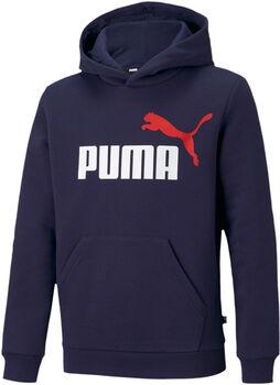 Puma Essentials Logo hættetrøje