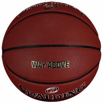 Spalding TF 1000 LEGACY Basket-Bold DK 20