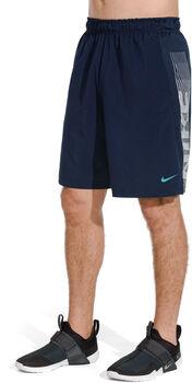 Nike Dri-Fit Shorts Herrer