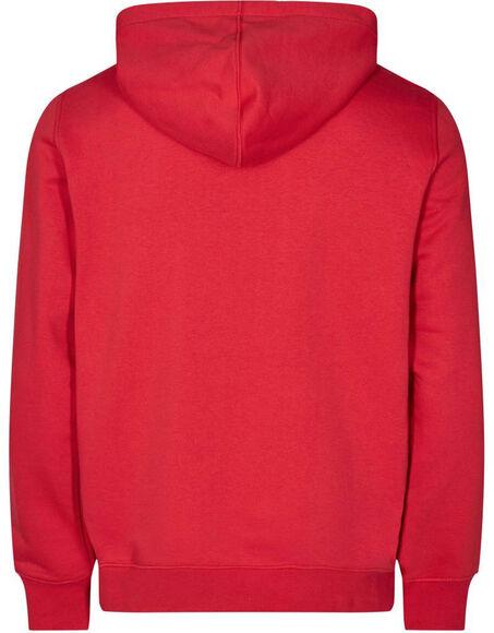 Absalon Hooded Sweatshirt