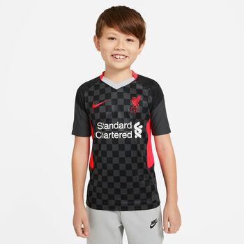 Nike Liverpool FC 20/21 3. Trøje Børn