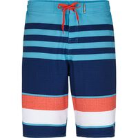 Firefly Fir Silas Bermuda Shorts Men