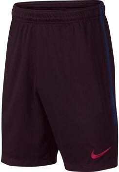 Nike FC Barcelona Dri-Fit Strike Shorts