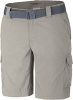 Silver Ridge II Cargo Short