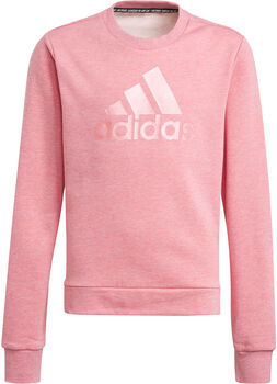 adidas Future Icons Logo sweatshirt