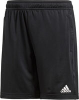 Condivo 18 Training Shorts