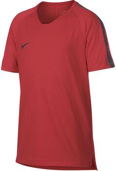 Nike Breathe Squad Top