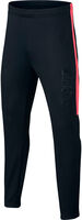 Nike Dry CR7 Academy Pants