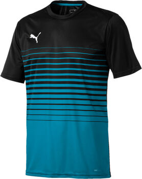 Puma ftblPLAY Graphic Shirt Herrer