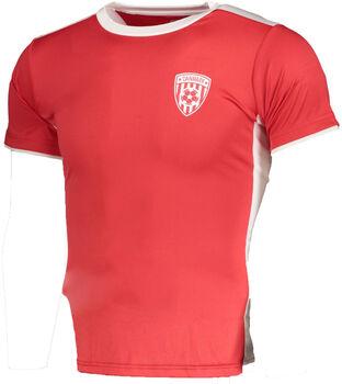 PRO TOUCH Danmark T-Shirt
