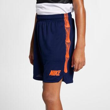 Nike Dri-Fit Squad Shorts