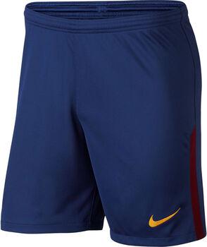 Nike FC Barcelona Stadium Short 17/18 Blå
