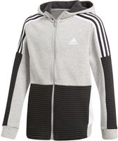 adidas Sports ID Fleece Hoodie - Børn Grå