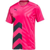 Puma IT evoPOWER Graphic Tee