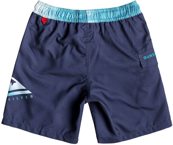 "Critical 15"" Swim Shorts"
