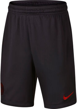 Nike Paris Saint-Germain Dri-Fit Strike Shorts