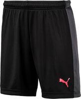 Evo TRG Shorts