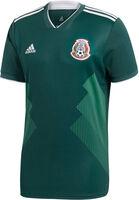 Mexico 18/19