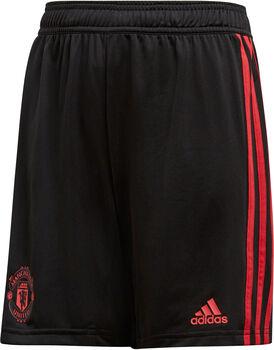 ADIDAS Manchester United Træningsshorts