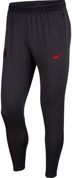 Nike Paris Saint-Germain Dri-Fit Strike Pants Herrer