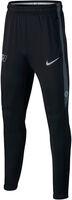 Dry CR7 Squad Pants