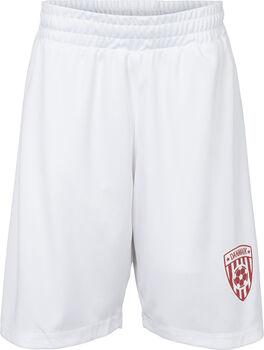 PRO TOUCH Danmark Shorts