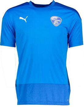 Puma FC Skanderborg Teamgoal 23 trænings T-shirt. Herrer