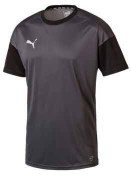 Puma FTBLNXT Training Tee Herrer Sort