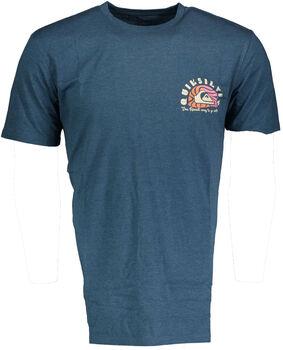 Quiksilver Magic tide T-shirt Herrer