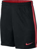 Dry Shorts Acadamy