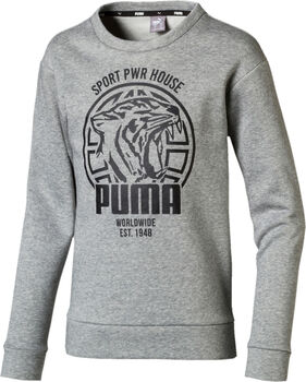 Puma Boys' Alpha Graphic Crew