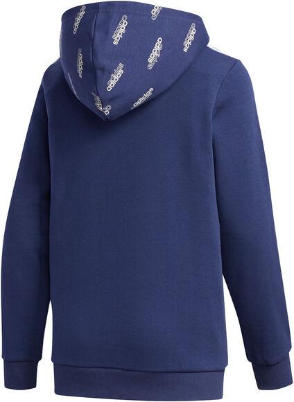 Core Favorites hoodie